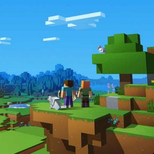 Ruling in the World of Minecraft Gaming